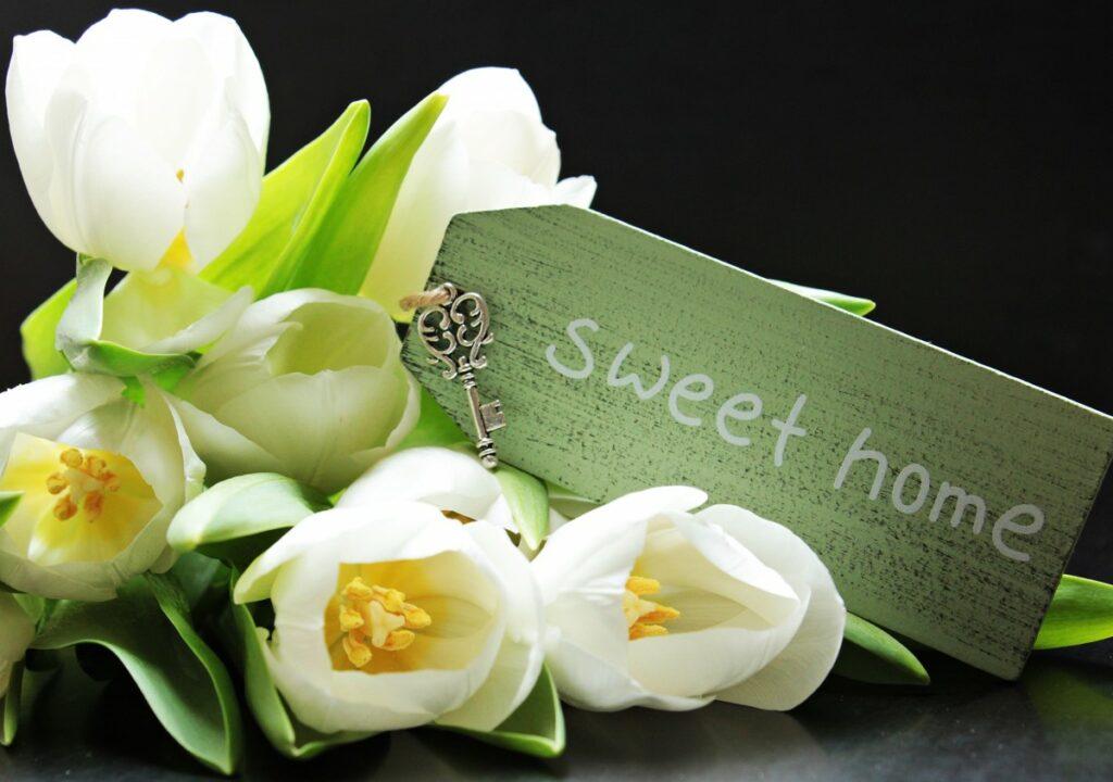 Kuvituskuva, jossa tulppaanikimppu ja avaimenperä tekstillä Sweet home