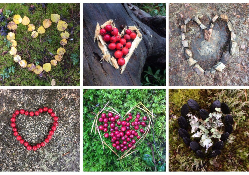 kuvituskuvana valokuva, jossa kuusi erilaista, muunmuassa marjoista tehtyä sydäntä