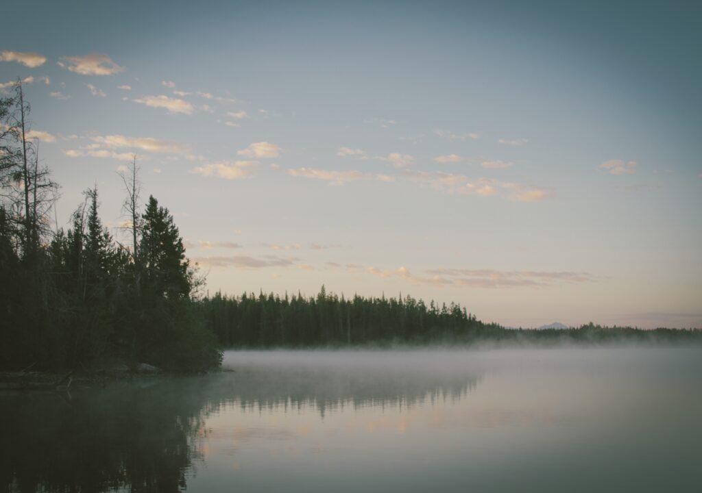 Kuvituskuva, jossa järvi ja metsää