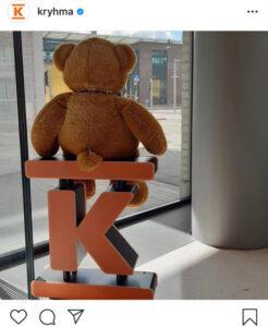 Valokuvassa ruskea pehmonalle istuu selin kameraan päin K-marketin logon päällä ja katsoo ulos ikkunasta.