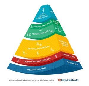Aikuisten liikkumissuositukset on kuvattu pyramidimallin mukaisesti, jossa alimpina ovat palauttava uni, taukoja paikallaanoloon ja kevyttä liikuskelua. Pyramidin huippu kertoo kestävyys- sekä lihaskunto- ja liikehallintaharjoittelun suositukset.