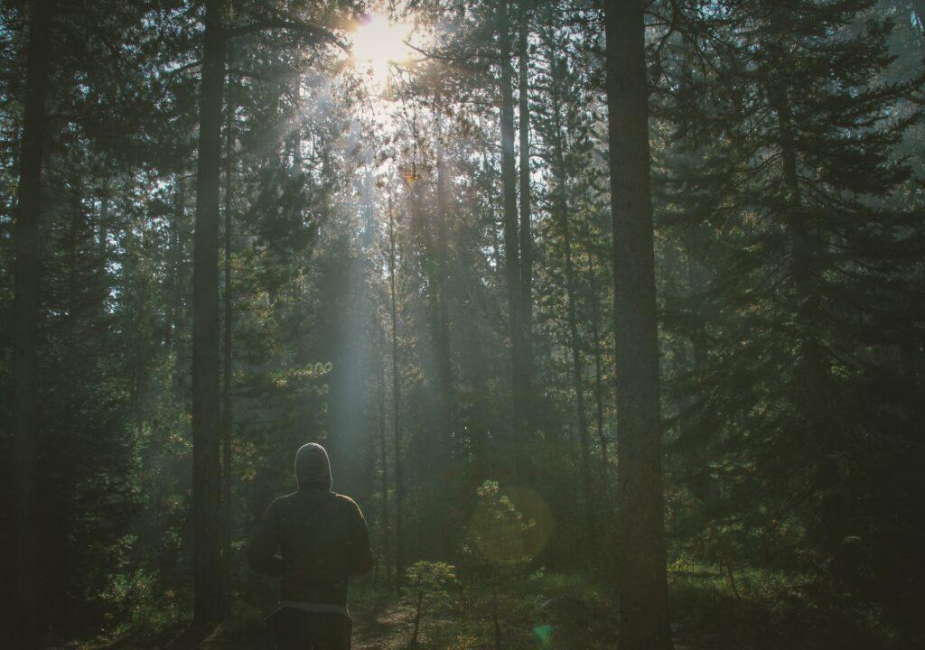Kuvituskuva miehestä metsässä