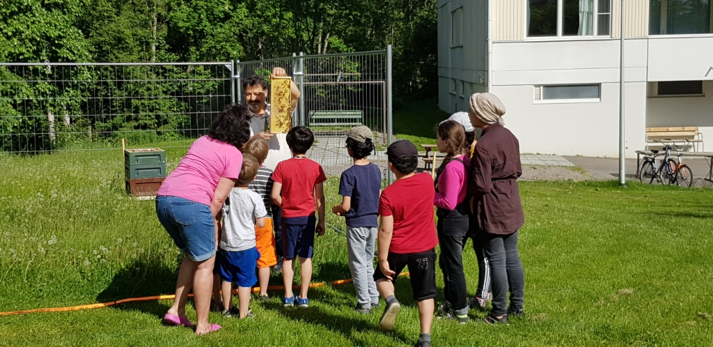 Children exploring a demonstration of bees from a beehive in Timonkatu in Lahti.