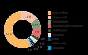 Infograafi esittelee merten mikromuovien lähteet, joista suurimpia ovat autojen renkaat 56%, laivojen maalit 16%, muoviteollisuus 10% sekä teiden ja rakennusten maalaukset 8%. Loput ovat peräisin tekstiilien pesusta, kaatopaikoilta, maaleista, kotitalouspölystä ja kosmetiikasta.