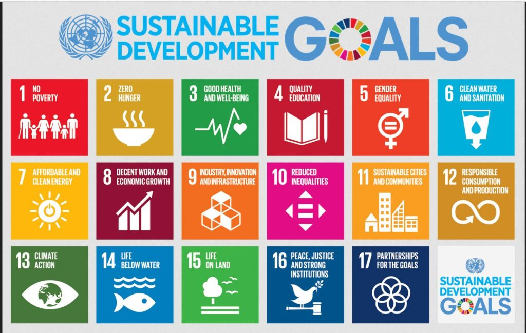 The goals are no poverty, zero hunger, good health and well-being, quality education, gender equality, clean water and sanitation, affordable and clean energy, decent work and economic growth, industry, innovation and infrastructure, reduced inequalities, sustainable cities and communities, responsible consumption and reduction, climate action, life below water, life on land, peace, justice and strong institutions, partnership for the goals.